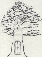 Temps Séquoias accueil