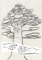 Aurélie FRESEL - Le Temps Des Séquoias